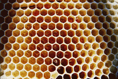 beehive Natural And Geometric Forms Example on series test, patterns for high schoolers, series calculus, mean formula, sequence recursive, series fraction, sequences that are not arithmetic or, sequence equation, mean theorem, roman mosaics, mean triangles,